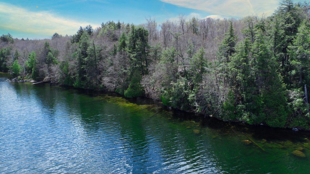 Jay Richardson Real Estate Bella Lake shoreline